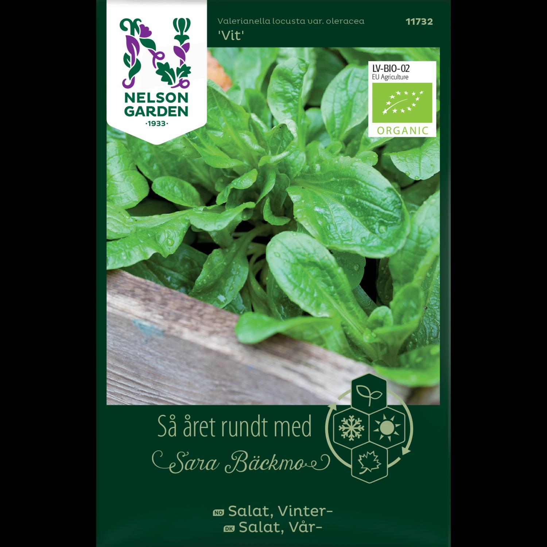 Salat, Vinter-, Vit, Organic