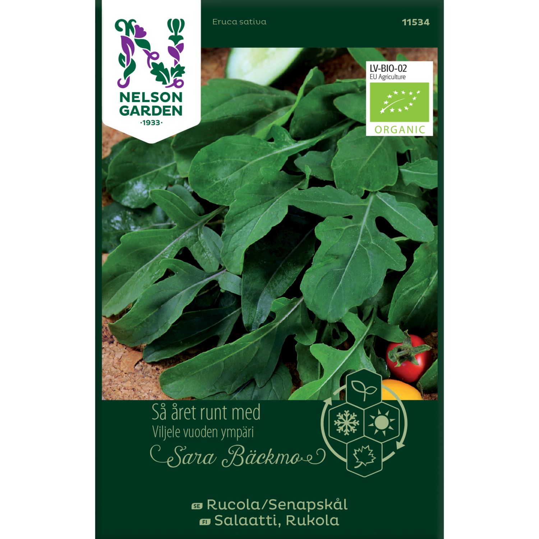 Salatsennep, Rucola, Organic