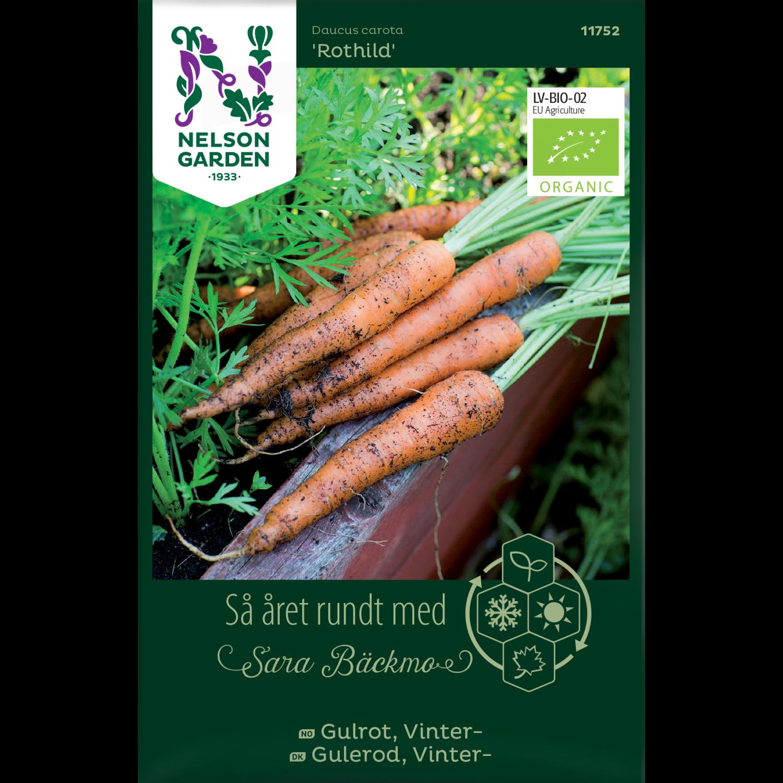 Gulrot, Höst / Vinter-, Rothild, Organic