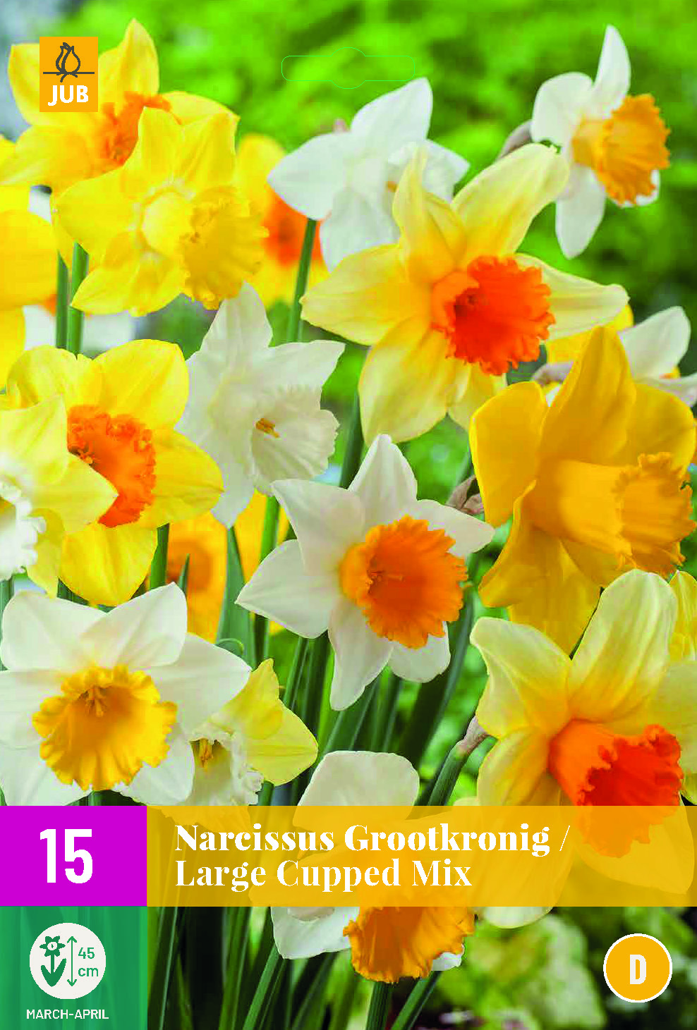 NARCISSI LARGE CUPPED MIX 15