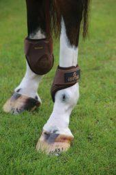 Kentucky Young Horses Fetlock Boots