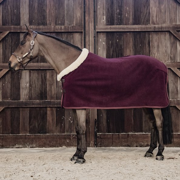 Kentucky Fleece Show Rug Heavy Bordeaux