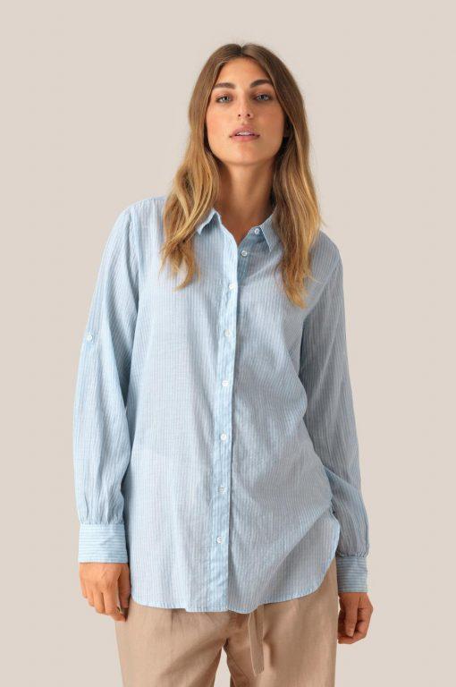 Dominus shirt 53253