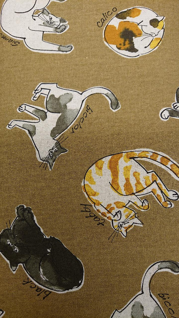kattekos på okerbrun bunn