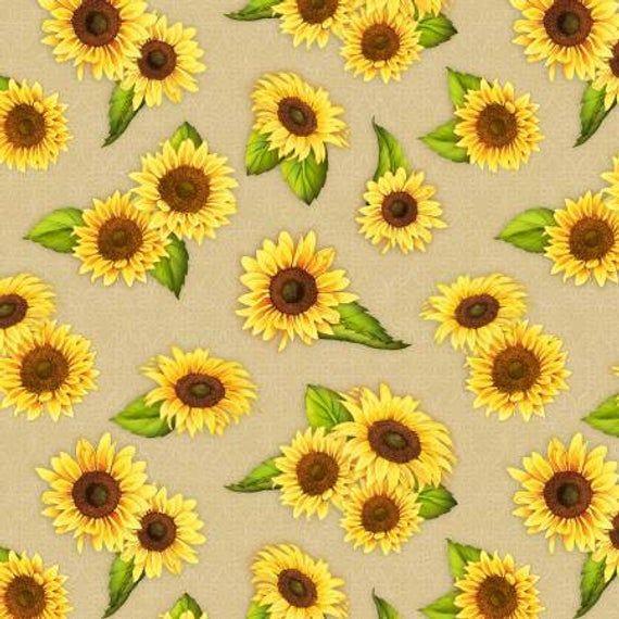 Follow the sun solsikker