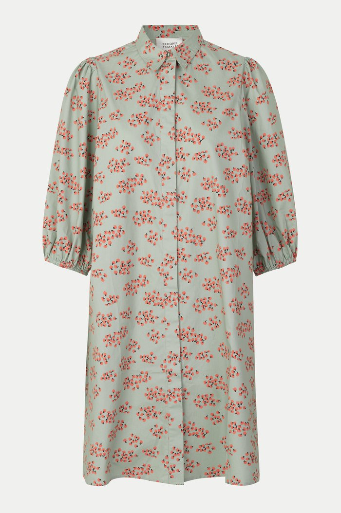 Delhi Shirt Dress