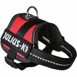Julius K-9 0 Rød