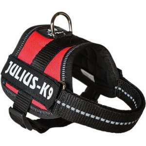 Julius K-9 1 Rød