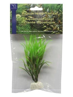 Plastplante Echinodorus tenellus, 10cm