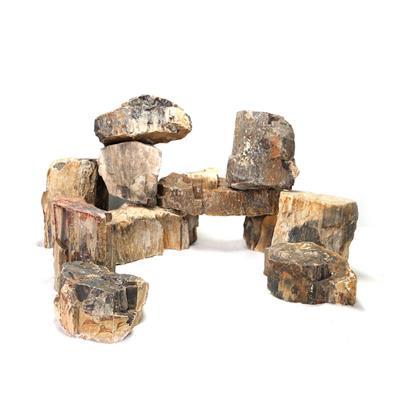Wooden Rock (10-30cm)