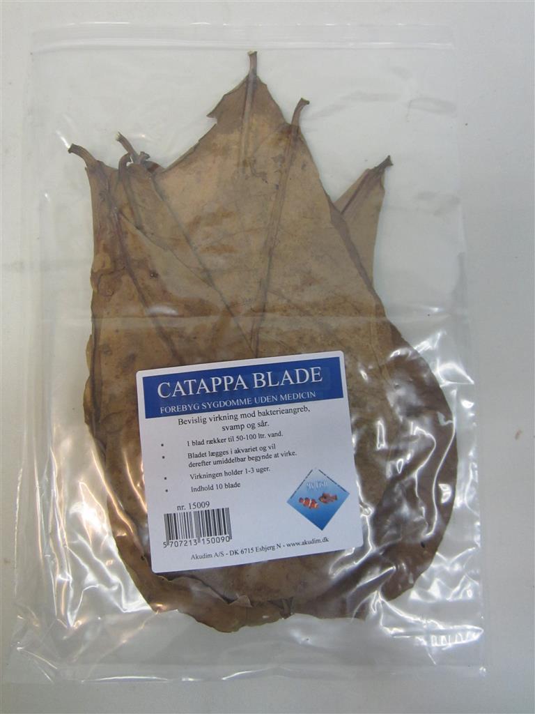 Catappa blader 10 stk