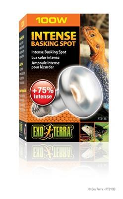ExoTerra Sun Glo Intense Basking Spot 100 W M/UVA