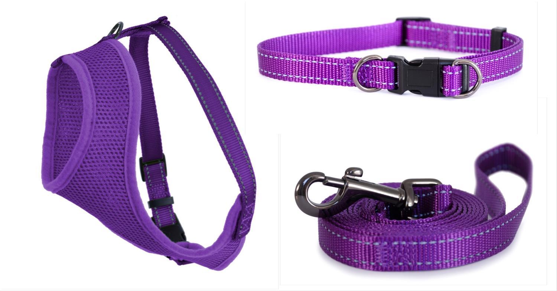 Iris Komplett Sett Purple XS