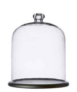 Affari Bella Glasskuppel med fat L