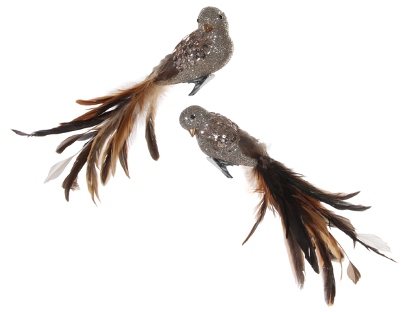 ShiShi Fugl Sølvglitter Brunefjær 27cm