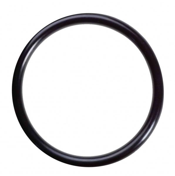 Lyman O ring for bunnplugg 450