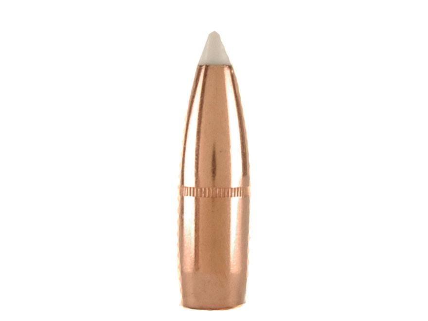 Nosler 250 grains Accubond 9,3 mm (.366), 50 pk.