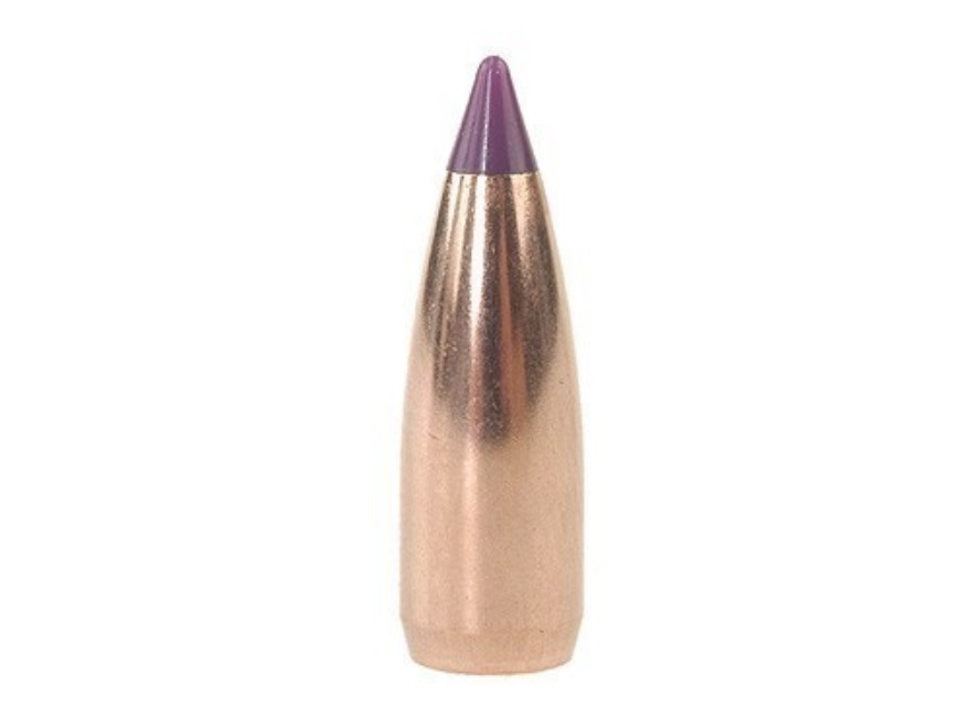 Nosler 55 grains Ballistic Tip Varmint 6 mm (.243), 100 pk.