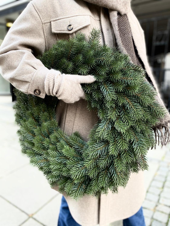 Mr Plant, Gran-Krans