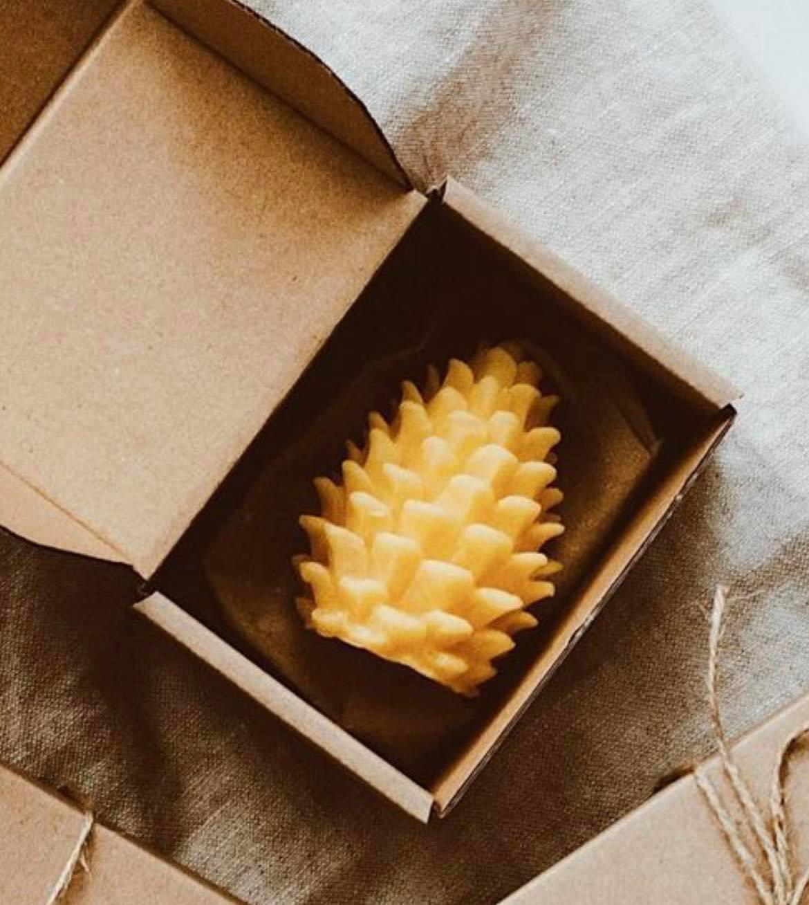 Goldrick, Pine Cone Gift Box