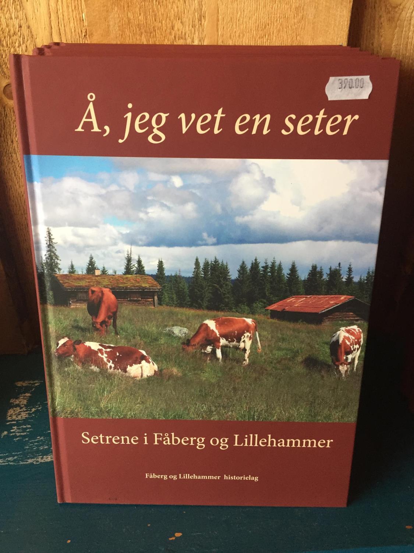 Bok Setrene i Fåberg og Lhmr
