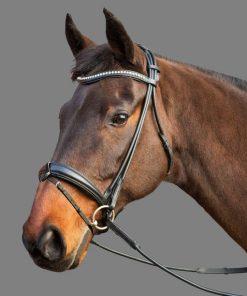 Mountain Horse Maestro Hodelag