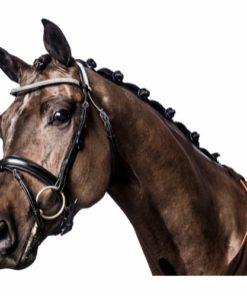 HorseGuard Ergo Hodelag m/Krystaller