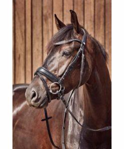 HorseGuard Performance Hodelag m/Krystaller