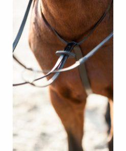 HorseGuard Martingal