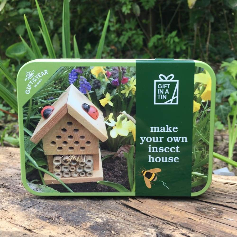 Gift Tin Make an Insect House