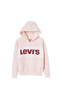 Sweat Hoddie Levi's