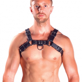 Mr.B Chest Harness