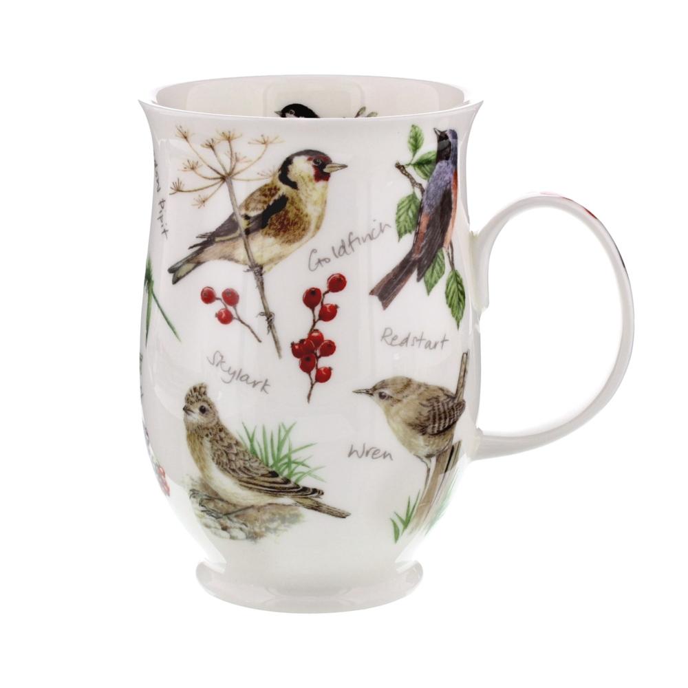Suffolk Dawn song goldfinch