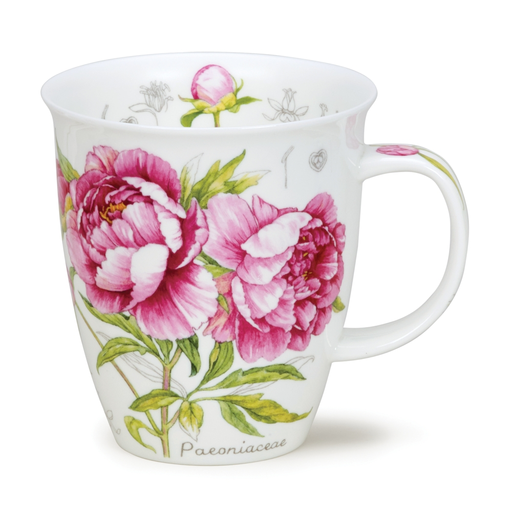 Nevis Botanical scetch - Pink - peony