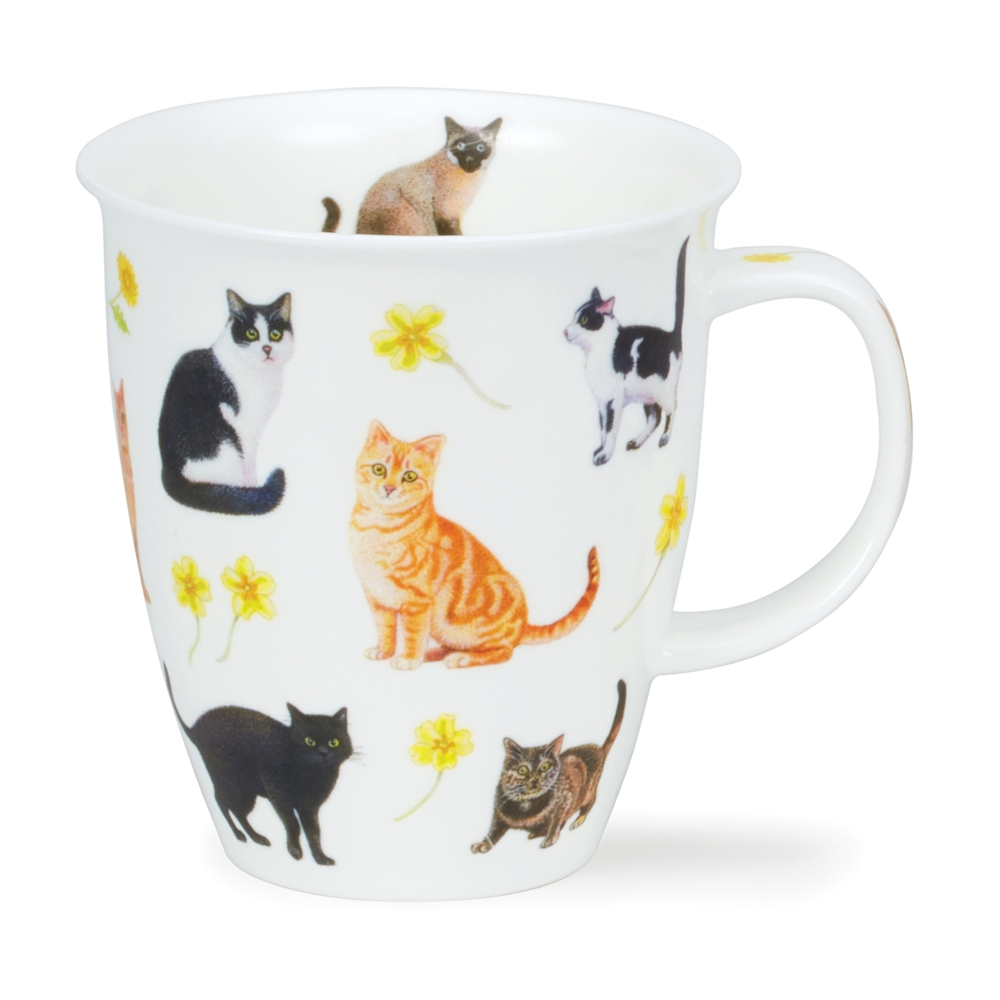 Nevis flowers cats -yellow