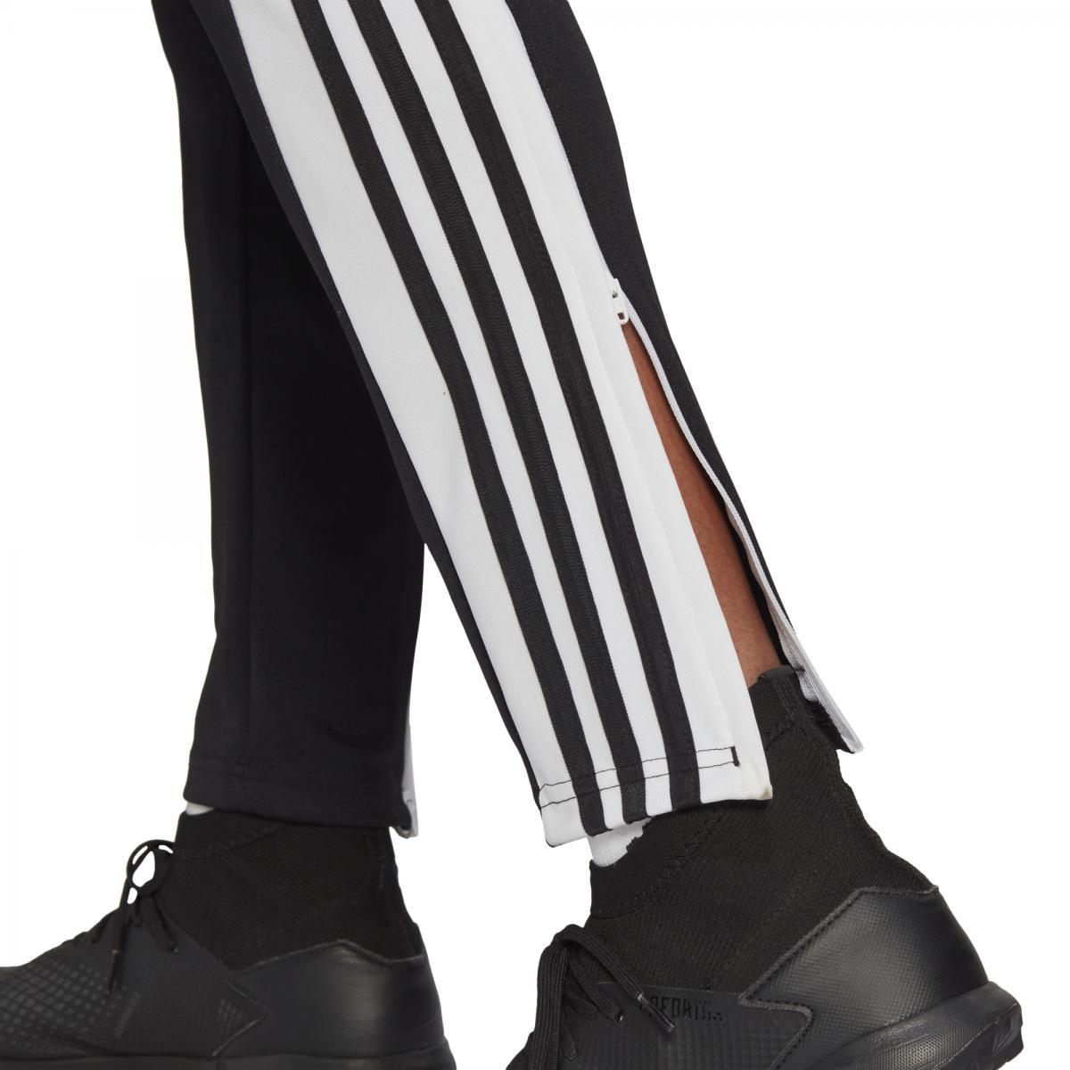 Adidas  Sq21 Tr Pnt(1)