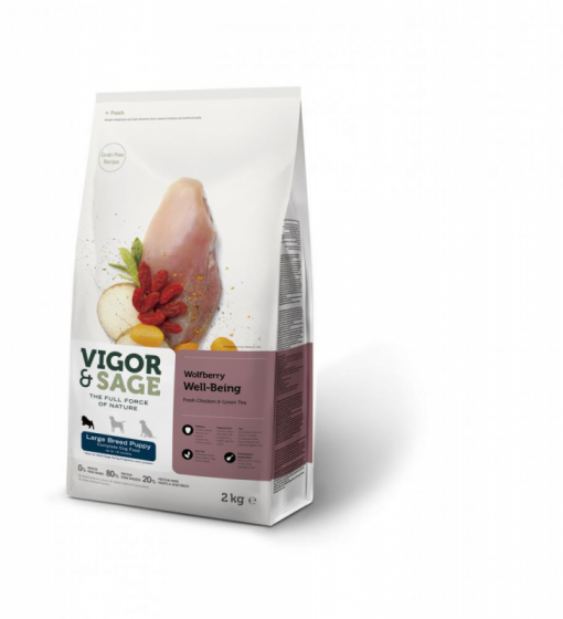 VS Wolfberry Well-Being Large breed,  2 kg