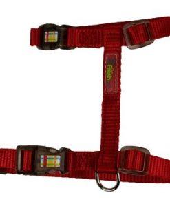 Go Fresh Sele Red L/Xl 10Mmx30-53Cm