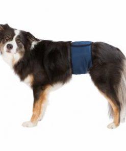 Magebånd T. Hannhund, S–M: 37–45 Cm Mørk Blå