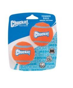 CHUCKIT Tennisball, M, 2 Stk.