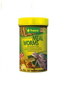 Tropical Mealworms 100Ml / 13G