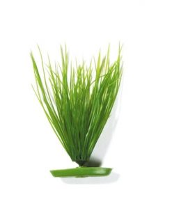 Plastvekst Hairgrass 20Cm