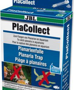 PLANARIA-FELLE Jbl, 10-500L.