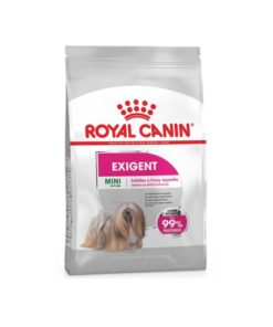 RC Exigent Mini 1 kg