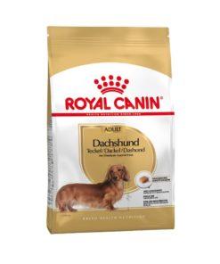 RC Breed Dachshund Adult 7,5 kg