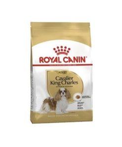RC Breed Cavalier King Charles Adult 7,5 kg