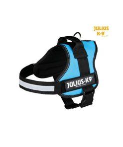 JULIUS K9 Sele Size 3 Aquamarine