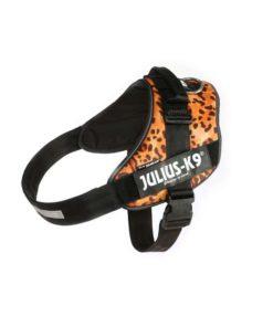 SELE Julius K9, Idc, Str.: 4, Leopard