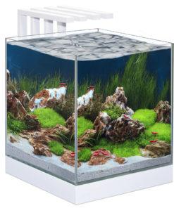 Akvarium Nano, Nexus Pure 25 LED, 22 liter