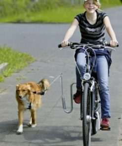 Doggy Guide Bicycleleading Device